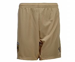 PUM SHORTS GOLD ΑΕΚ no L